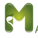 GRUPO MARZO PROFESSIONAL SERVICES Logo