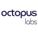 OctopusLabs Company Profile