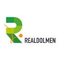 Realdolmen Company Profile